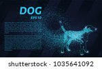 dog of the particles. the dog... | Shutterstock .eps vector #1035641092