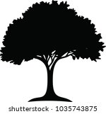 growing tree that continues to... | Shutterstock .eps vector #1035743875