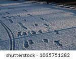 uk snow close up. february 2018 ... | Shutterstock . vector #1035751282