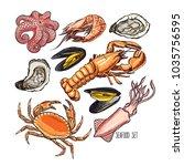 Set Of Different Marine Animals....