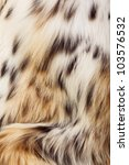 Background Of Lynx Spotted Fur. ...
