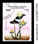 Small photo of MOSCOW, RUSSIA - NOVEMBER 26, 2017: A stamp printed in Benin shows Psilocybe zapotecorum, Mushrooms serie, circa 1996