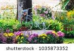 vintage white bike flowerpot in ...   Shutterstock . vector #1035873352
