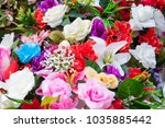 bright and beautiful colors of... | Shutterstock . vector #1035885442