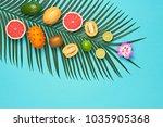 tropical summer design set.... | Shutterstock . vector #1035905368