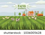 rural countryside with a farm... | Shutterstock .eps vector #1036005628