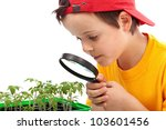 Boy studies young plants looking through magnifier - closeup - stock photo