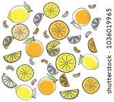 drawing lemon   orange... | Shutterstock . vector #1036019965