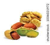 fresh walnut  nutritious... | Shutterstock .eps vector #1036021972