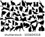 Stock vector cats silhouettes set vector illustration on eps 103604318