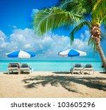 caribbean beach.paradise... | Shutterstock . vector #103605296