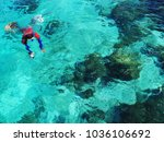 sea snorkeling in bohol ...   Shutterstock . vector #1036106692