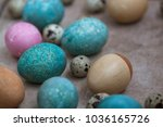 eggs painted in natural... | Shutterstock . vector #1036165726