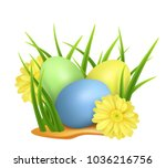 easter eggs in green grass with ... | Shutterstock .eps vector #1036216756