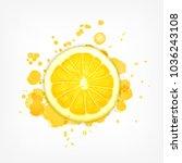 lemon slice with splash. vector ... | Shutterstock .eps vector #1036243108