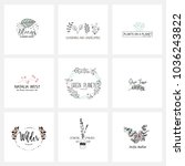 flower logo templates... | Shutterstock .eps vector #1036243822