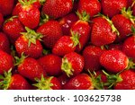 lots of nice  fresh  spring... | Shutterstock . vector #103625738