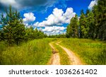 summer rural forest road way... | Shutterstock . vector #1036261402