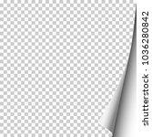 vector sheet of transparent... | Shutterstock .eps vector #1036280842