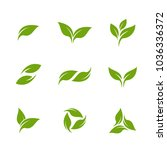 leaves set logo vector template | Shutterstock .eps vector #1036336372