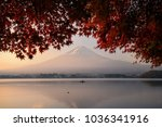 fuji mountain reflection with... | Shutterstock . vector #1036341916