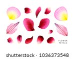 Stock photo set of pink petals rose peony and clematis hand painted watercolor illustrations isolated on 1036373548
