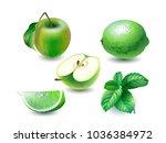 vector illustration of mint ... | Shutterstock .eps vector #1036384972