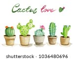 watercolor illustration set...   Shutterstock . vector #1036480696