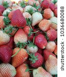 fresh strawberries from the... | Shutterstock . vector #1036680088