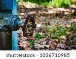 water pipe   water valve | Shutterstock . vector #1036710985