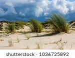 Nature   Dunes On Norderney   ...