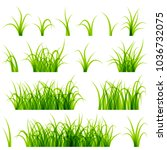 green grass set isolated on... | Shutterstock .eps vector #1036732075
