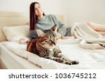 Stock photo beautiful young woman with cute cat lying in bed at home 1036745212
