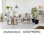 bright living room interior... | Shutterstock . vector #1036790092