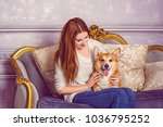 english fashionable breed of... | Shutterstock . vector #1036795252