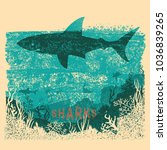 shark swimming in sea on old... | Shutterstock .eps vector #1036839265