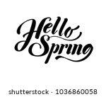 hello spring. hand drawn... | Shutterstock .eps vector #1036860058