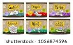 set colorful food labels ... | Shutterstock .eps vector #1036874596
