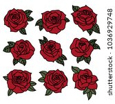 colored tattoo style rose...   Shutterstock .eps vector #1036929748