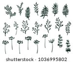 willow and palm tree branches ... | Shutterstock .eps vector #1036995802