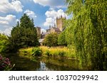 wells cathedral and bishop's... | Shutterstock . vector #1037029942