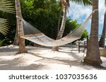 rope hammocks suspended on... | Shutterstock . vector #1037035636