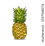 pineapple  sketch for your... | Shutterstock .eps vector #1037068276