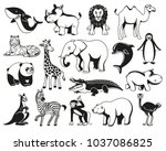 wild animals cartoon australia  ... | Shutterstock .eps vector #1037086825