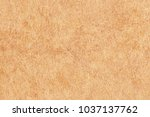 high resolution yellow antique... | Shutterstock . vector #1037137762