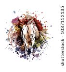 vector color illustration horse | Shutterstock .eps vector #1037152135