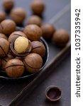 close up macadamia nuts.... | Shutterstock . vector #1037335942