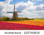 Windmill With Tulip Field In...