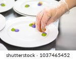 cook decorates a plate of food...   Shutterstock . vector #1037465452