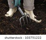 Gardener Using A Pitchfork To...